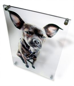 acrylic photo mount
