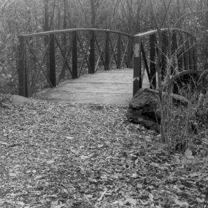 bridge-to-unknown-496x496